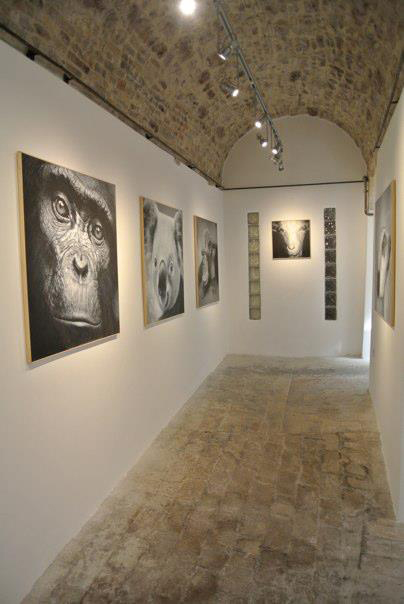 Minigallery Assisi Contemporary Art