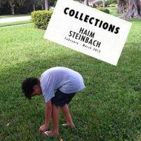 Haim Steinbach. Collections